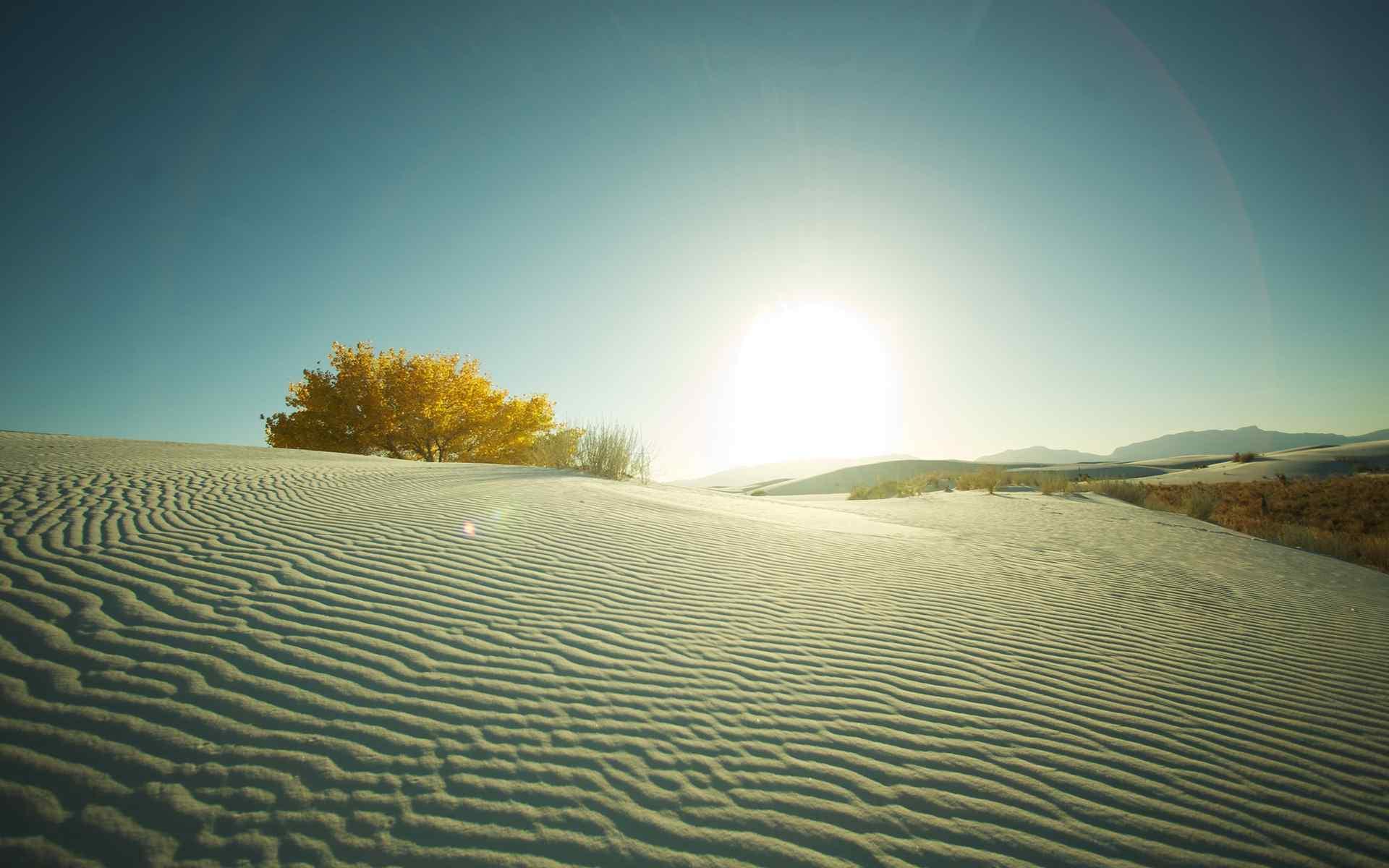 沙漠中阳光风景桌面壁纸