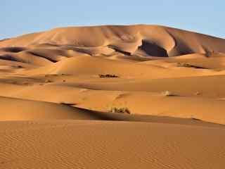 热带沙漠风景高清图片桌面壁纸