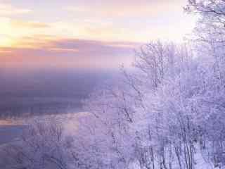 冬天唯美雪景桌面壁纸