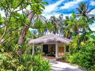 马尔代夫丛林小屋唯美风景高清壁纸