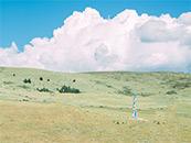 青藏高原唯美小清新自然风景高清壁纸图片