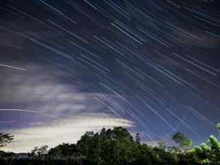 树林上方星星划过