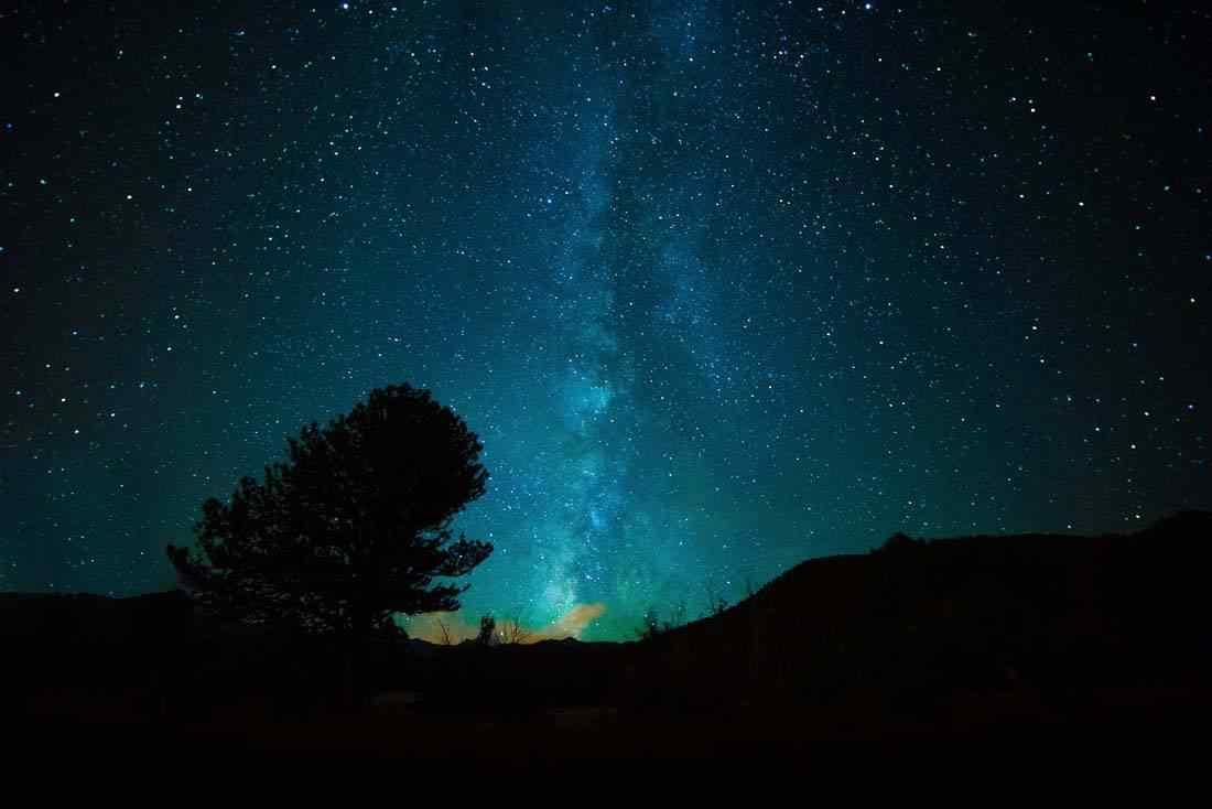 唯美森林上空的星空高清壁纸