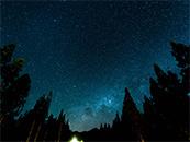 树林上的星空唯美灿烂高清壁纸