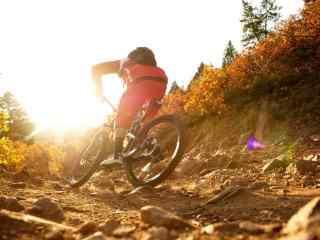 山地自行车越野壁