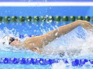 里约奥运新晋段子手游泳选手傅园慧桌面壁纸