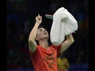 2016里约奥运会乒乓球男单冠军赛图片桌面壁纸