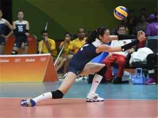 2016里约奥运中国女排进入决赛前比赛接球桌面壁纸