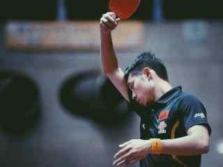 中国男乒队许昕比赛桌面壁纸