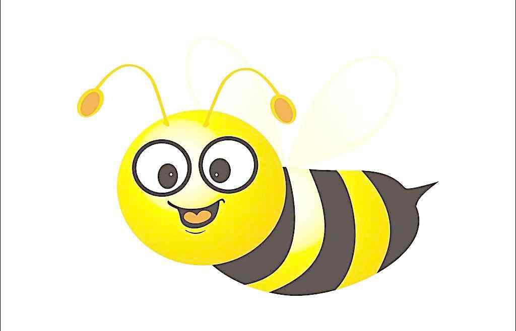 蜜蜂矢量图片_矢量壁纸