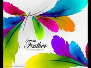 矢量,彩色,羽毛,背景_矢量壁纸